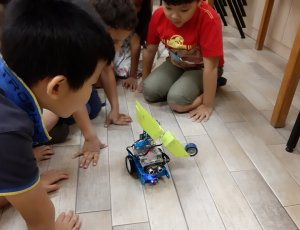 Robotics and Coding Introductory course